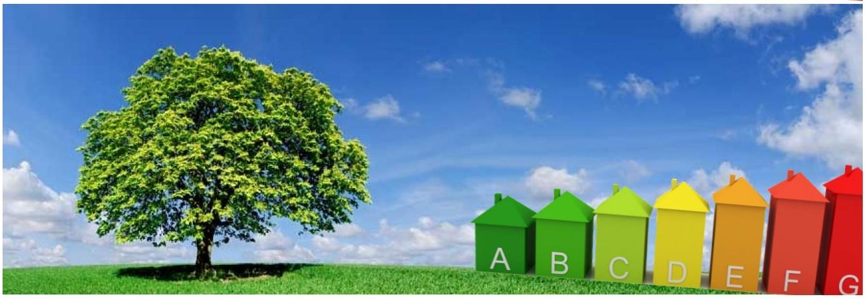 Duurzaam boom+huis